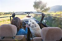Mature woman and dog, in convertible car, rear view Stock Photo - Premium Royalty-Freenull, Code: 649-08125540