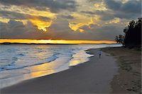 queensland - Beach at Sunrise Stock Photo - Premium Royalty-Freenull, Code: 618-08184535