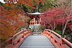 Japanese temple garden in autumn, Daigoji Temple, Kyoto, Japan, Asia Stock Photo - Premium Rights-Managed, Artist: robertharding, Code: 841-08211807