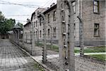 Barbed wire fences and buildngs, Auschwitz, Poland