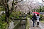 People on Philosopher's Walk by Canal with Blooming Cherry Trees, Kyoto, Japan