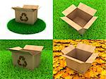 Open Cardboard Box on a Background of Green Grass and Yellow Leaves.
