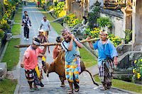 Men carrying cow tied to a stick during ceremony, Penglipuran, traditional Balinese village, Bangli, Bali, Indonesia Stock Photo - Premium Rights-Managednull, Code: 700-08385862