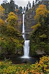 Fall Colors at Multnomah Falls in the Columbia River Gorge in Autumn