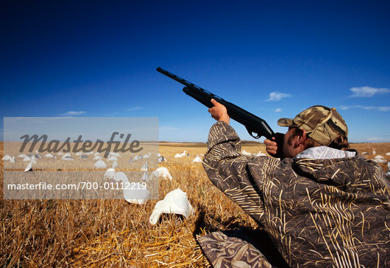 goose hunting gun shooting