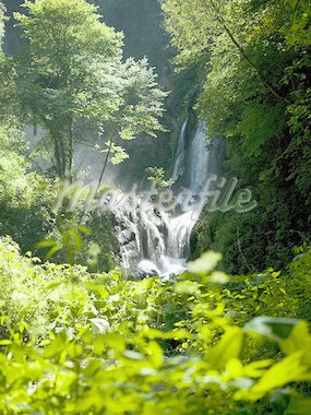 Waterfall in forest Stock Photo - Premium Royalty-Freenull, Code: 640-01354367