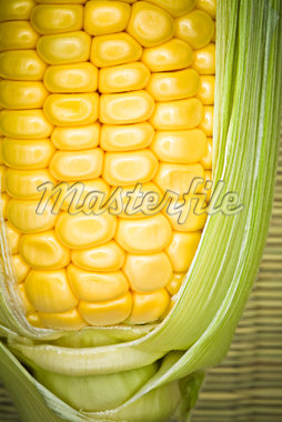 Close-up of Corn on the Cob    Stock Photo - Premium Rights-Managed, Artist: Robert Karpa, Code: 700-01519537