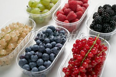 Six plastic punnets of different berries Stock Photo - Premium Royalty-Freenull, Code: 659-01853339