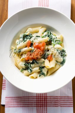 Rigatoni with spinach and cream sauce and diced tomato Stock Photo - Premium Royalty-Freenull, Code: 659-01854875