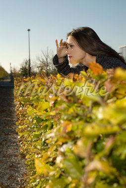 Woman Peering over Hedge    Stock Photo - Premium Rights-Managed, Artist: Picup Pictures, Code: 700-02010494