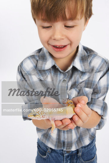 boy lizard gecko one boy and