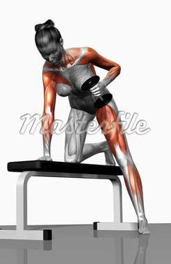 Dumbbell kickback exercise (Part 2 of 2) Stock Photo - Premium Royalty-Freenull, Code: 671-02102135