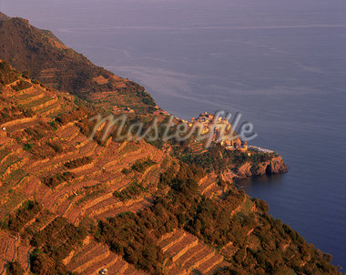 Village of Manarola and terraced vineyards at sunset, Cinque Terre, UNESCO World Heritage Site, Liguria, Italy, Europe    Stock Photo - Premium Rights-Managed, Artist: Robert Harding Images, Code: 841-02720379