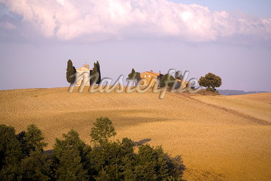 Near Pienza, Val d'Orcia, Tuscany, Italy, Europe    Stock Photo - Premium Rights-Managed, Artist: Robert Harding Images, Code: 841-02721875