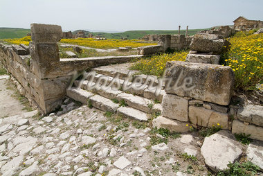 Roman ruins, Dougga    Stock Photo - Premium Rights-Managed, Artist: Arcaid, Code: 845-02726948