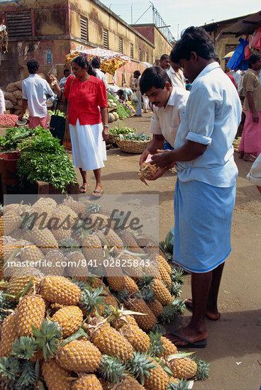 Market vendor selling pineapples, main market area, Kandy, Sri Lanka, Asia    Stock Photo - Direito Controlado, Artist: Robert Harding Images, Code: 841-02825843
