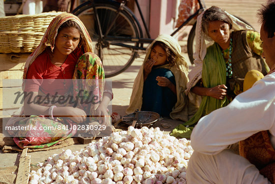 Woman selling garlic, Jaipur, Rajasthan state, India, Asia    Stock Photo - Direito Controlado, Artist: Robert Harding Images, Code: 841-02830929