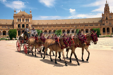 Horses and trap in the Plaza de Espana, in Seville, Andalucia, Spain, Europe    Stock Photo - Premium Rights-Managed, Artist: Robert Harding Images, Code: 841-02831277