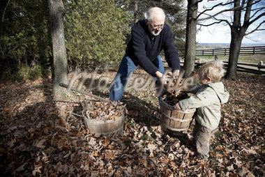 Grandson Helping Grandfather Rake Leaves Stock Photo - Premium Royalty-Free, Artist: Kristin Sjaarda          , Code: 600-02922649
