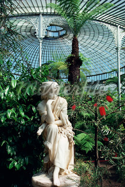 Statue in glasshouse at the Botanic Gardens, Glasgow, Scotland, United Kingdom, Europe                                                                                                                   Stock Photo - Premium Rights-Managed, Artist: Robert Harding Images, Code: 841-02944515