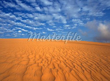 Desert landscape,Mozambique                                                                                                                                                                              Stock Photo - Premium Rights-Managed, Artist: Axiom Photographic       , Code: 851-02961951