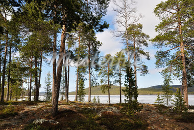 Lake Inari, Lapland, Finland Stock Photo - Premium Rights-Managed, Artist: Jochen Schlenker         , Code: 700-02967662