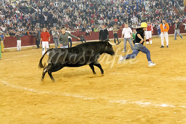 Fiestas del Pilar, Zaragoza, Spain Stock Photo - Premium Rights-Managed, Artist: Mike Randolph            , Code: 700-03015083