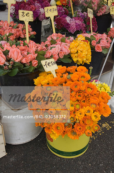 Marche aux Fleurs, Cours Saleya, Nice, Alpes Maritimes, Provence, Cote d'Azur, French Riviera, France, Europe                                                                                            Stock Photo - Direito Controlado, Artist: Robert Harding Images    , Code: 841-03058372