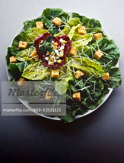 Mixed Green Salad with Boiled Eggs, Croutons and Parmesan Stock Photo - Premium Royalty-Freenull, Code: 659-03521115