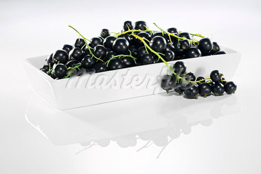 Blackcurrants in dish with reflection Stock Photo - Premium Royalty-Freenull, Code: 659-03536697