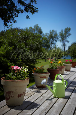 Watering Can and Planters on Deck, Prince Edward County, Ontario, Canada Stock Photo - Premium Rights-Managed, Artist: Derek Shapton, Code: 700-03552422