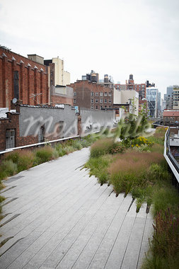 High Line, New York City, New York, USA Stock Photo - Premium Rights-Managed, Artist: Derek Shapton, Code: 700-03596232