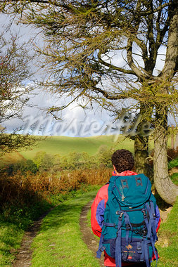 Wales, Clwyd.  A trekker on Offa's Dyke Stock Photo - Premium Rights-Managed, Artist: AWL Images, Code: 862-03714214