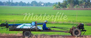 Farmer Driving Tractor, Prachinburi Province, Thailand Stock Photo - Premium Rights-Managed, Artist: dk & dennie cody, Code: 700-03762385
