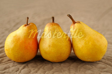 William pears Stock Photo - Premium Royalty-Freenull, Code: 652-03802956