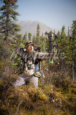 Male bow hunter aims with a compound bow while bow hunting in a Black Spruce forest in the Eklutna Lake area, Chugach Mountains, Chugach State Park, Southcentral Alaska, Autumn Stock Photo - Premium Rights-Managed, Artist: AlaskaStock, Code: 854-03845010