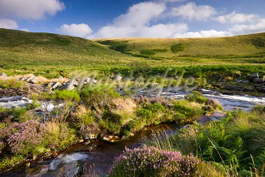 River Tavy running through Tavy Cleave in Dartmoor National Park, Devon, England, United Kingdom, Europe Stock Photo - Premium Rights-Managed, Artist: Robert Harding Images, Code: 841-03869886