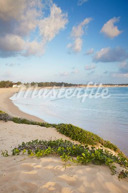 Tofo beach, Tofo, Inhambane, Mozambique, Africa Stock Photo - Premium Rights-Managed, Artist: Robert Harding Images, Code: 841-03870126