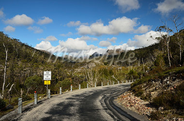 Road through Cradle Mountain-Lake St Clair National Park, UNESCO World Heritage Area, Tasmania, Australia Stock Photo - Premium Royalty-Free, Artist: Jochen Schlenker, Code: 600-03907283