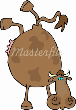 This illustration depicts a cow doing a hand stand. Stock Photo - Royalty-Free, Artist: caraman, Code: 400-03910028