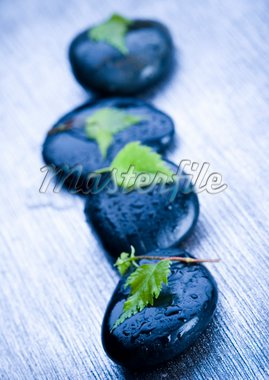 Zen is a freshness and the way of life. Stock Photo - Royalty-Free, Artist: JanPietruszka, Code: 400-03934388
