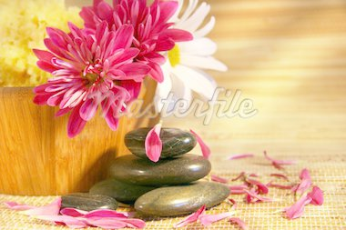 Aromatherapy with pink and white chrysanthemums,natural stones for relaxation Stock Photo - Royalty-Free, Artist: Sandralise, Code: 400-03956780