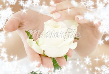beautiful woman hands with rosebud and snowflakes Stock Photo - Royalty-Free, Artist: dolgachov, Code: 400-03968043