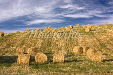Hay bales standing ready to be collected Stock Photo - Royalty-Free, Artist: iko, Code: 400-03975661