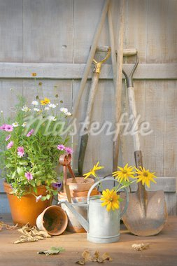 Garden shed with tools and flower pots Stock Photo - Royalty-Free, Artist: Sandralise, Code: 400-04123656