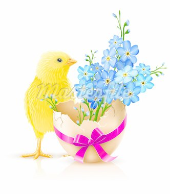 easter holiday illustration with chicken isolated on white background Stock Photo - Royalty-Free, Artist: LoopAll, Code: 400-04173372