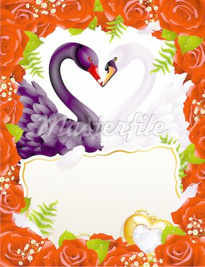 Greeting card with swans in love Stock Photo - Royalty-Free, Artist: denis13, Code: 400-04234388