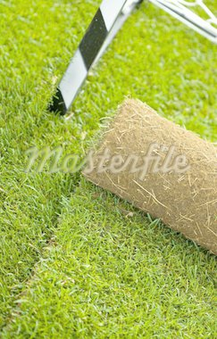 Turf grass roll partially unrolled on sport field - closeup Stock Photo - Royalty-Free, Artist: lightkeeper, Code: 400-04237040