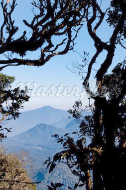 Mountain scenery with tree branches in Silhouette Stock Photo - Royalty-Free, Artist: kiankhoon                     , Code: 400-04277749