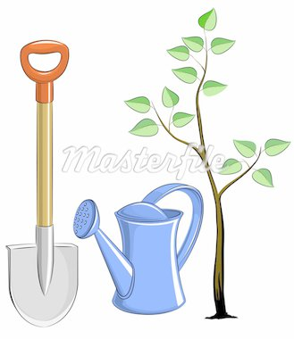 set garden instrument with tree vector illustration Stock Photo - Royalty-Free, Artist: aleksangel                    , Code: 400-04284023